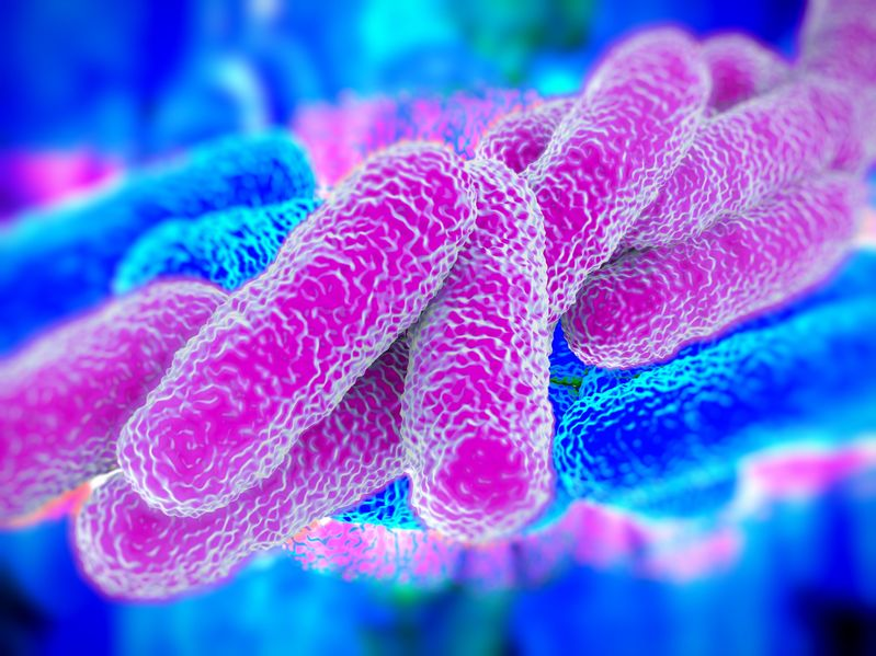 How Poor Plumbing Systems Can Lead To Legionnaires' Disease